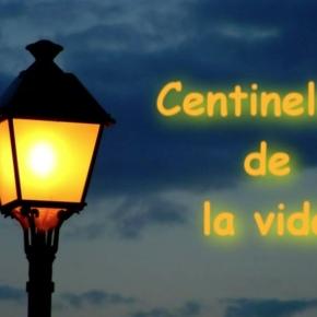 CENTINELAS DE LA VIDA   DOCUMENTAL SOBRE LA SENSIBILIDAD QUÍMICAMÚLTIPLE