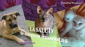 LA SALUD DE NUESTRAS MASCOTAS – Con CristinaFenoy